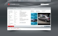 Citroen Bazar website detail